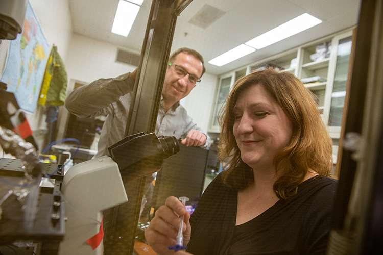 Christine A. Klemens, PhD, in lab of her mentor Alexander Staruschenko, PhD