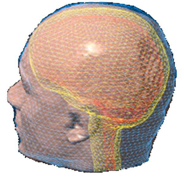 MEG/EEG head modeling: Tessellated surface envelopes of head tissues