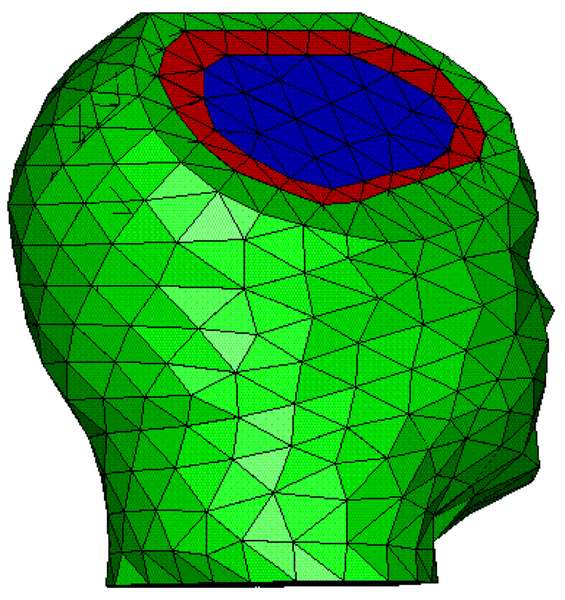 MEG/EEG head modeling: volume meshes built from tetrahedra