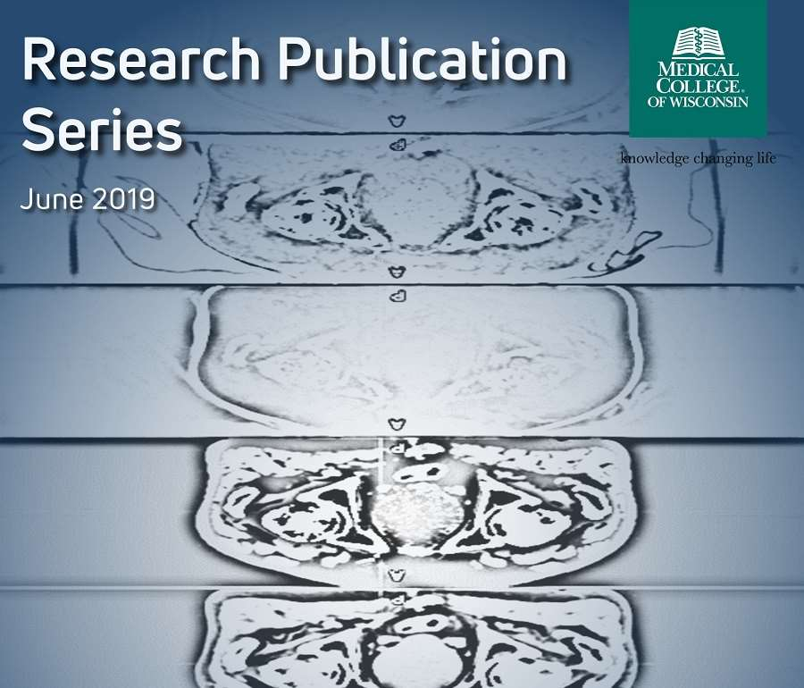 Research Publication Series June 2019 Cover Image