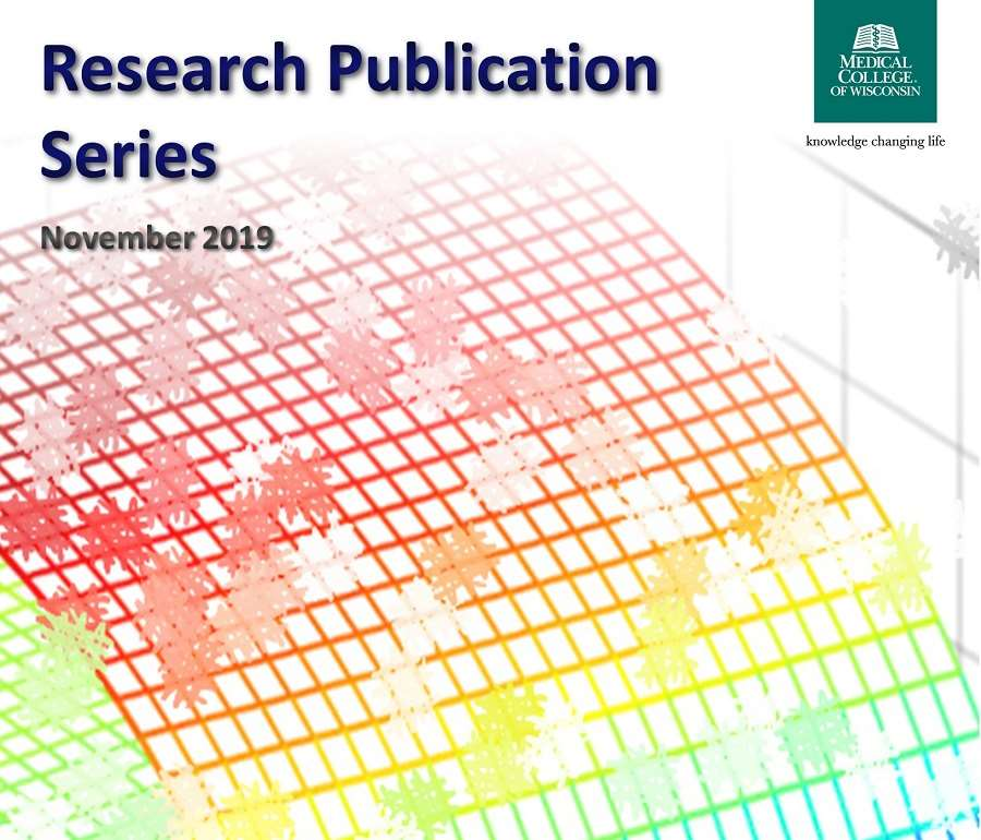 Research Publication Series November 2019 Cover Image