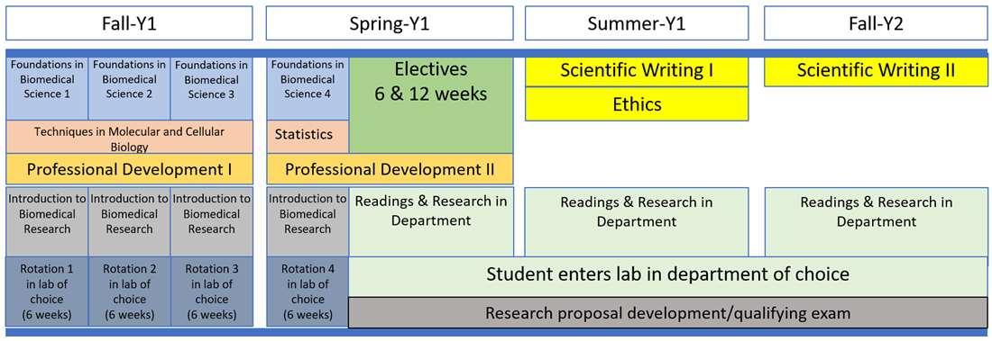 Interdisciplinary Doctoral Program in Biomedical Sciences