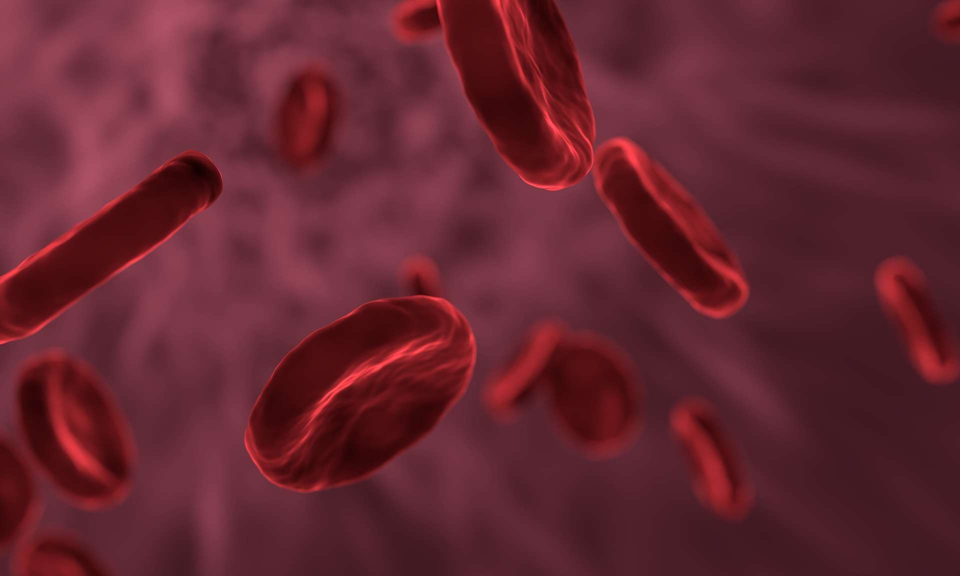 red-blood-cells-3188223_1920